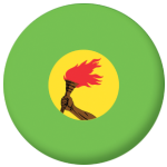 Zaire Country Flag 25mm Flat Back